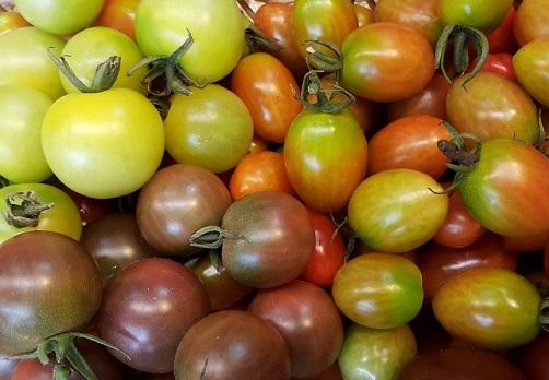 車厘茄 Cherry tomatoes