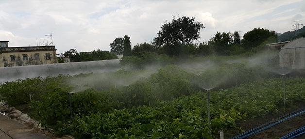 霧噴工程終於完成!