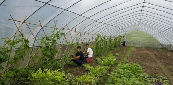 香港現代農業,後繼有人了!!